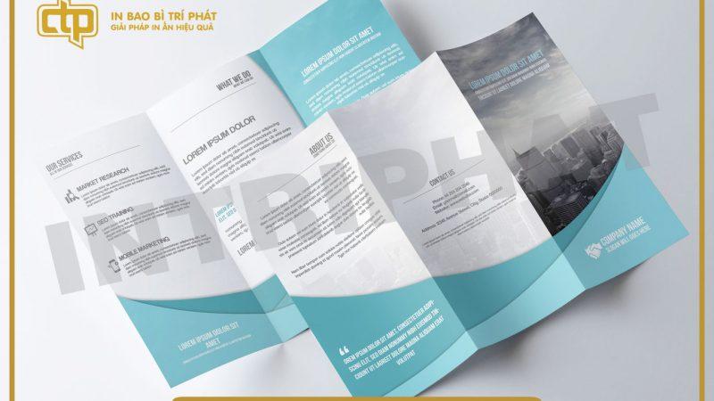 Những loại giấy in brochure phổ biến được sử dụng hiện nay